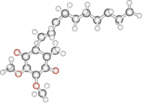 Q10 molecule