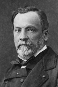 Pasteur (2)
